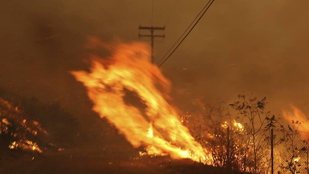 Extreme Winde könnten Feuer neu anfachen