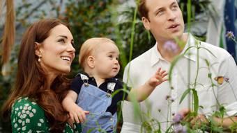 Kate, George und William bestaunen Schmetterlinge (Archiv)
