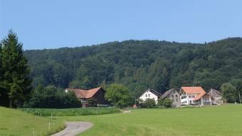 Die Gemeinde Bergdietikon kann ihre Bau- und Nutzungsordnung noch nicht wie geplant dieses Jahr überarbeiten.