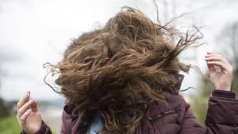 Im Herbst kommen die Probleme der trockenen Haare. Es gibt aber Gegenmittel. (Symbolbild)