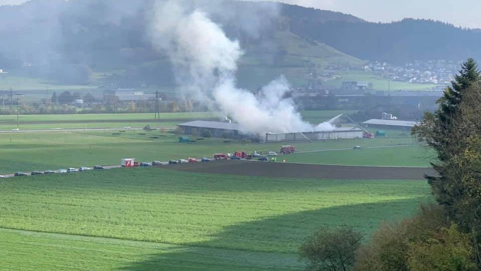 Hühnerfarm Dagmersellen: Brandursache geklärt