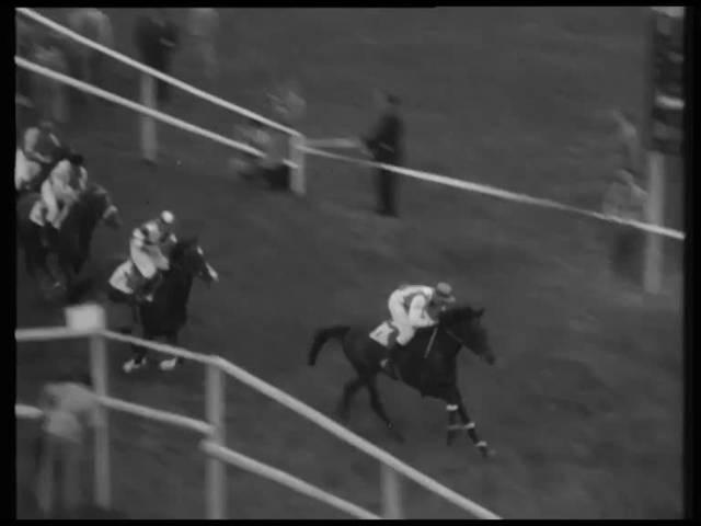 Pferderennen in Aarau: Beitrag der Schweizer Filmwochenschau vom 12. Mai 1950