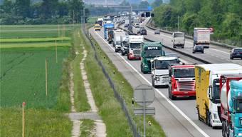 Letzten Sommer waren bereits die Profile für den A1-Ausbau zwischen Härkingen und Luterbach zu sehen – ohne die geforderte Untertunnelung. Bruno Kissling