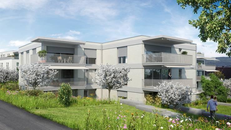 Die Überbauung sieht neun Mehrfamilienhäuser sowie sechs Einfamilien- und Doppeleinfamilienhäuser vor. zvg/Visualisierung
