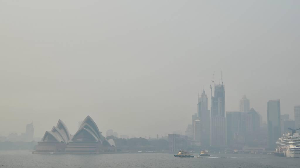 Hitze facht Buschbrände weiter an - Dichter Rauch in Sydney