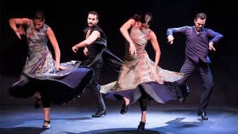 «Flamencos en route» werden die TaB-Bühne erzittern lassen.Bild: zvg