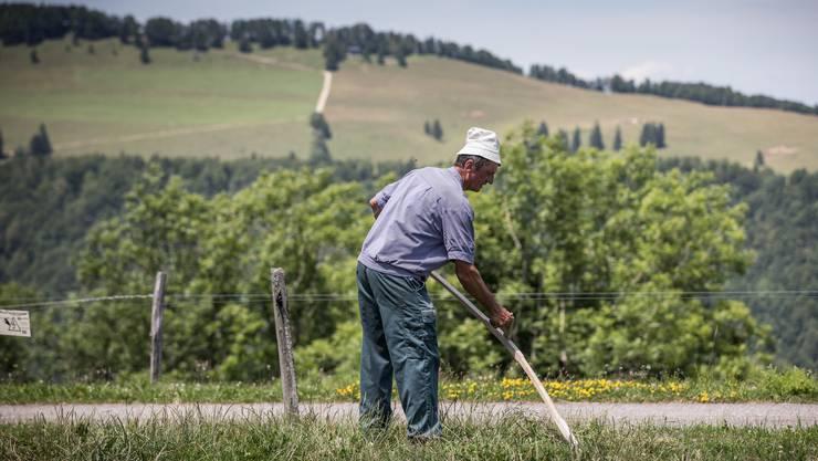 Partnervermittlung für landwirte .ch