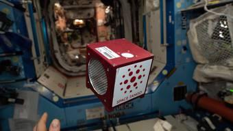 So sieht das Mini-Labor «Space Tango CubeLab» aus. Hier an Bord der internationalen Raumstation ISS.
