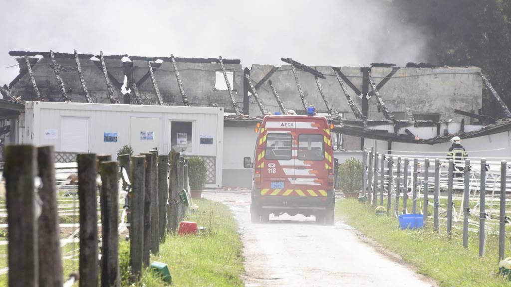 So sah es nach dem Brand von Mitte Juli 2017 im nationalen Pferdegestüt von Avenches VD aus.