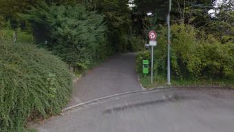 Der Lastwagen fuhr trotz Fahrverbot auf dem Spazierweg In der Au in Riehen.