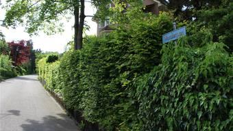 Der Mansbergweg führt vom «Falken» steil hinauf zum «Stein», wie die Burg damals kurz genannt wurde.