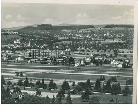 Hans Rätzer in Payerne hat diese Postkarte 1933 bekommen, Blick von Dintikon aus nach Dottikon und Hägglingen, im Zentrum die Bally-Schuhfabrik.