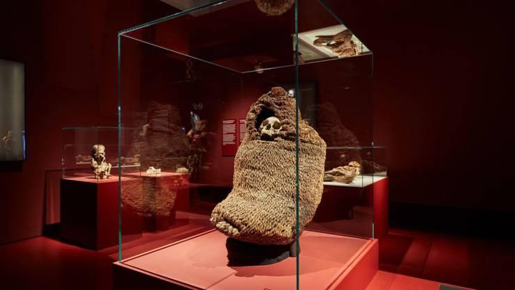 Im Naturhistorische Museum Basel sind in einer Sonderausstellung dutzende Mumien aus aller Welt, wie hier aus Südamerika, zu sehen.