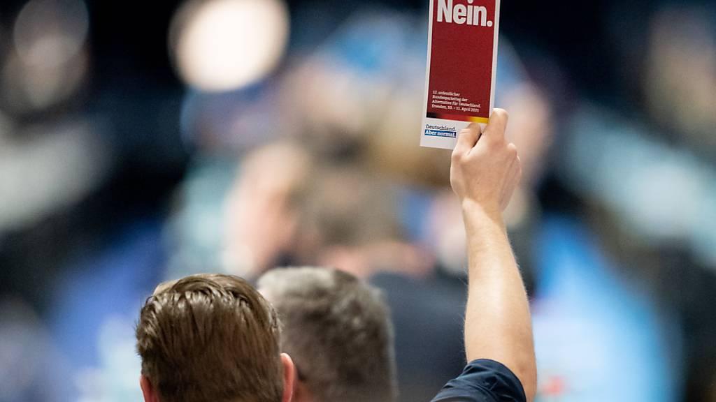 AfD bestimmt noch kein Spitzenteam für Bundestagswahl
