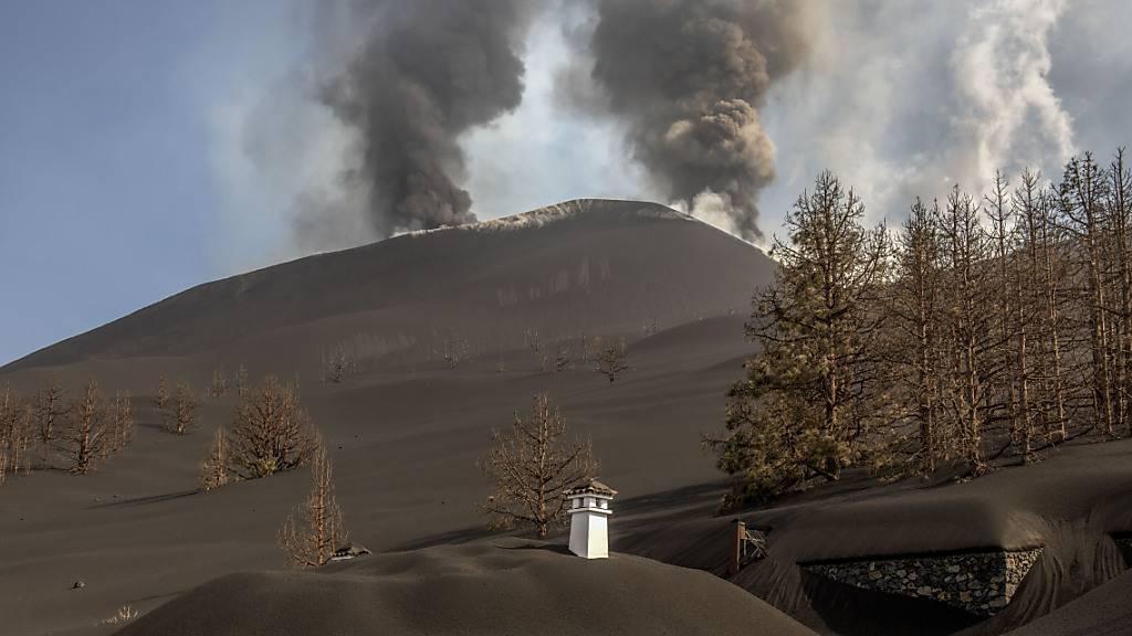 Lava zerstört Hunderte weitere Gebäude auf Vulkaninsel La Palma