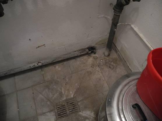In den Wäschenräumen der Marktstrasse 9 ist zwar kein Abwasserrohr geborsten, es sieht aber danach aus