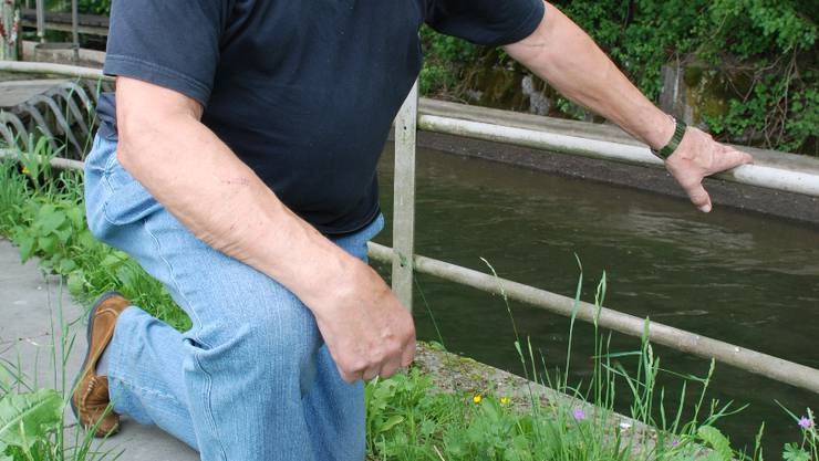 Fand über 50 tote Fische im Rechen: Abwart Kurt Hauri verständigte sofort die Kantonspolizei.