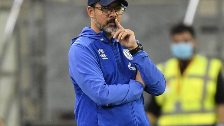 Trainer David Wagner hat bei Schalke 04 eine Jobgarantie erhalten