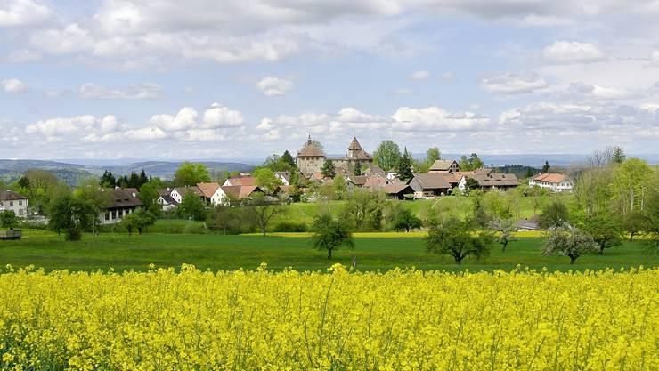 Die Eingemeindung von Kyburg in Ilnau-Effretikon kommt voran.