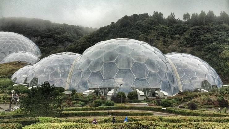 In den Bio Domes des Eden Project in Cornwall wächst ein künstlicher tropischer Regenwald.