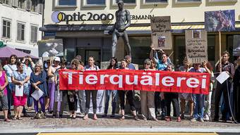 Der Tierschutzskandal von Hefenhofen rief Demonstranten auf den Plan.