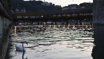 Am Mittwochabend ist ein betagter Mann gerettet worden, der in Luzern  in die Reuss gefallen war. (Symbolbild)