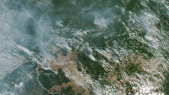 Eine Sattelitenaufnahme zeigt die eindrücklichen Ausmasse der Waldbrände im Amazonasgebiet.