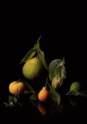 Wie ein altmeisterliches Stillleben: Rodins Früchte, vom Fotografen arrangiert.