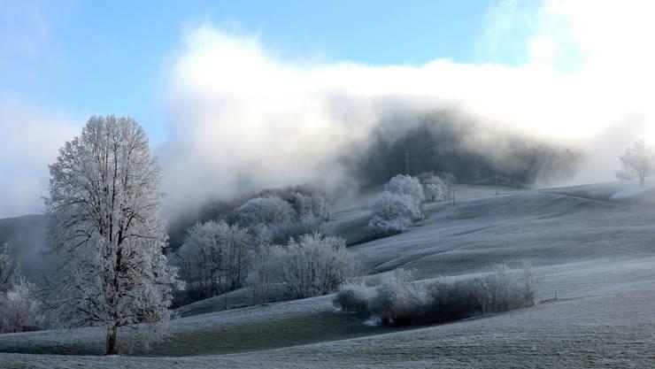 Nebel in Sicht auf der Schafmatt, aufgenommen von Kurt Knechtli