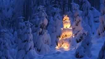 Weisse Weihnachten gebe es nur in 20 bis 25 Prozent der Jahre, sagt Stephan Bader von Meteo Schweiz.