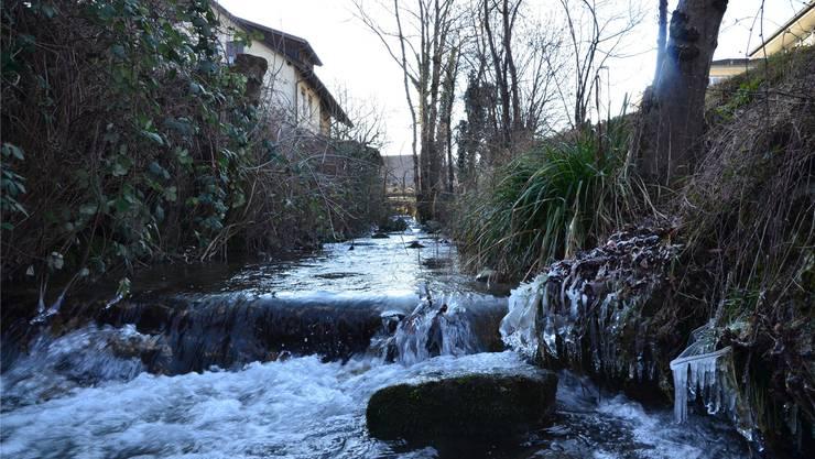 Normalerweise ist der Wissenbach ein harmloses Gewässer, bei Hochwasser drohen der Gemeinde Boswil aber Millionenschäden. es