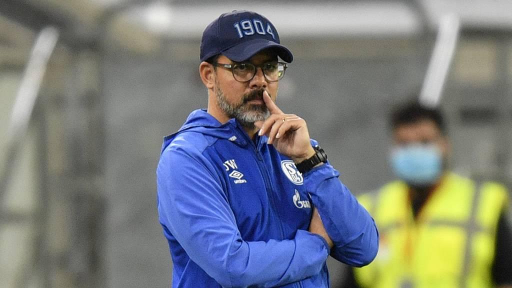 Jobgarantie für Schalkes Trainer Wagner