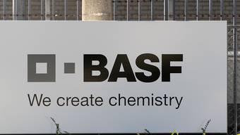 Entwicklungsorganisationen werfen den deutschen Chemiekonzernen BASF und Bayer den Verkauf von nicht genehmigten Pestiziden vor. (Archivbild)