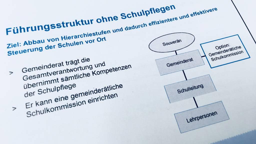 Aargau will Schulfplege abschaffen