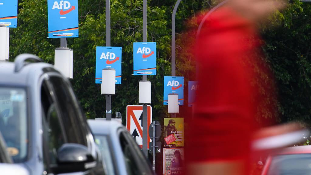 Wahlplakate der AfD hängen am Terrassenufer an Lampenmasten. Die AfD ist nach der Bundestagswahl in Sachsen und Thüringen stärkste Kraft. Foto: Robert Michael/dpa-Zentralbild/dpa