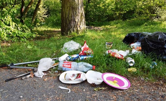 Littering ist vor allem in den stadtnahen Landschaften entlang der Flüsse ein Problem.
