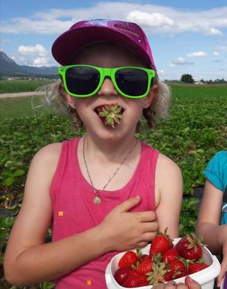 Lecker sind sie, die Erdbeeren! Dieses Foto entstand am Sonntag.