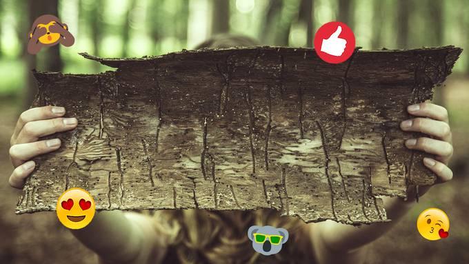 Baumrinde soll die Umwelt vor dem Plastik-Wahn retten