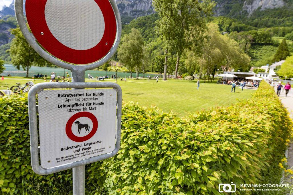 Hundeverbot am Walensee (© Kevin Suter)