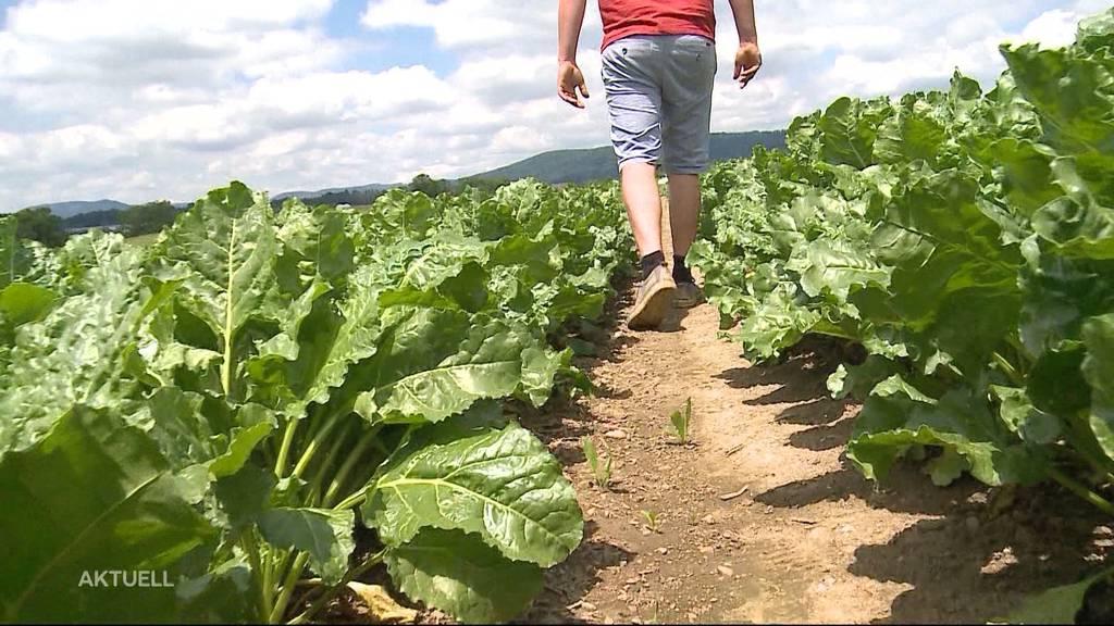 Ist der steigende Druck auf Nicht-Bio-Bauern gefährlich?