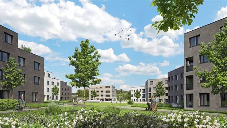 So soll es im neuen Quartier «In den Matten» in Othmarsingen dereinst aussehen: Wohnblöcke umsäumen eine parkähnliche Anlage. Visualisierung/zVg