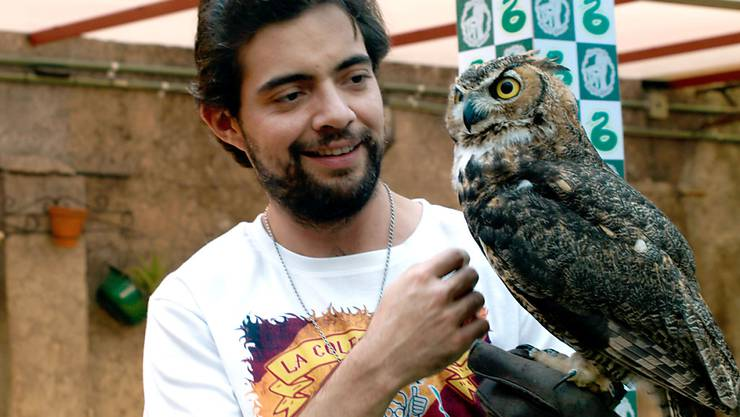 Der Mexikaner Menahem Asher Silva Vargas besitzt die angeblich weltgrösste Sammlung an Fanartikeln aus der Zauberwelt von J.K. Rowling (Archiv).
