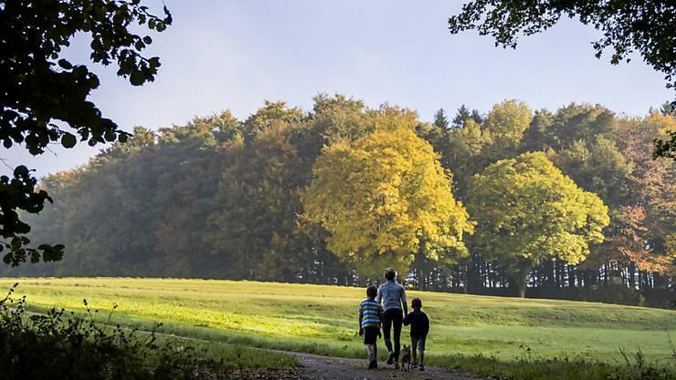 Eine Familie spaziert am herbstlich gefärbten Waldrand entlang, oberhalb von Winkel ZH. (Archivbild)
