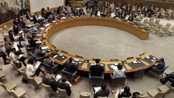 Für die nächsten zwei Jahre ist Pakistan in den UNO-Sicherheitsrat gewählt (Archiv)