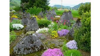 Eigener Garten: Einzelne kleine Tiere bis zu einem Gewicht von 10 kg dürfen auf eigenem Grund beerdigt werden.