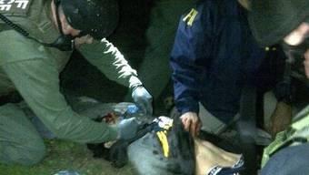 Dschochar Zarnajew wird verletzt gefasst