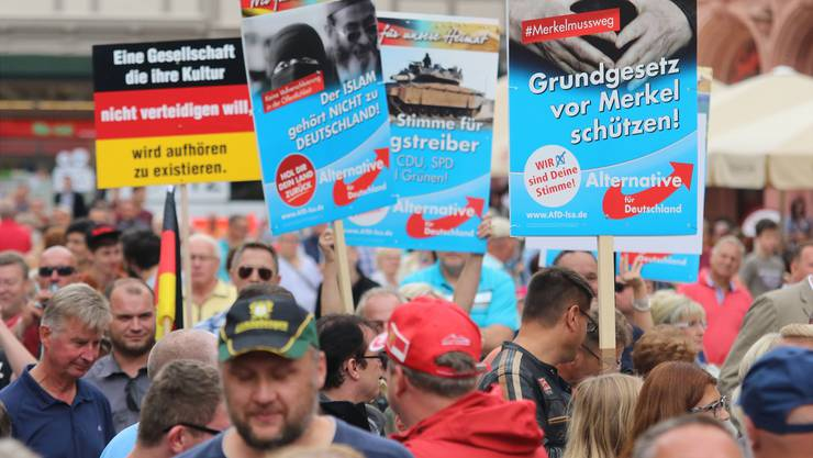Hass auf die Kanzlerin: Am Rande einer Wahlveranstaltung der CDU in Quedlinburg (Sachsen-Anhalt) demonstriert die AfD.