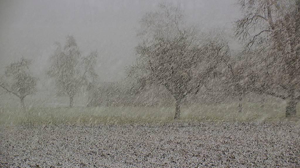 «Luis» hat den Schnee gebracht - Temperaturen sinken wieder