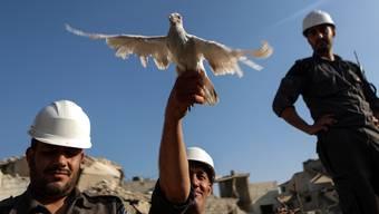Die Weissen Helme gelten als Friedensaktivisten, weil sie Menschen aus Kriegstrümmern retten.