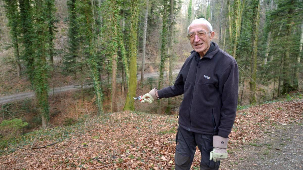 An diesem Abhang fand Waldbesitzer Manfred Hunziker am Donnerstag den Teppich, in den eine weibliche Leiche eingerollt war.